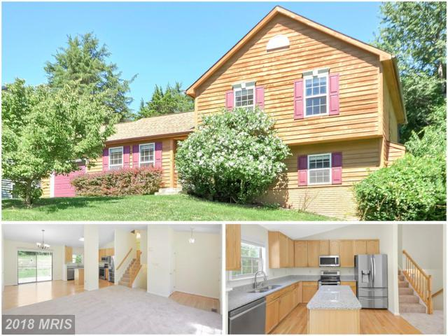 6744 Meadow Lawn Circle, New Market, MD 21774 (#FR10290543) :: Ultimate Selling Team