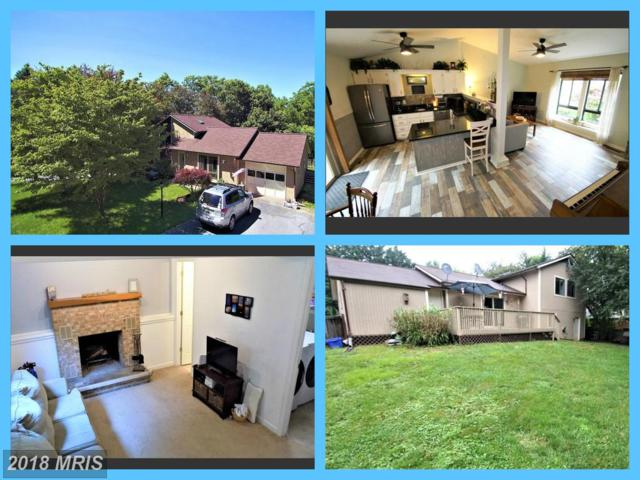 6908 Fox Chase Road, New Market, MD 21774 (#FR10294412) :: Ultimate Selling Team