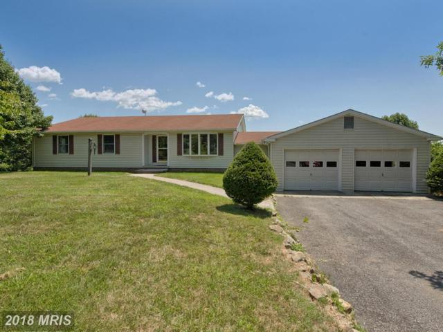 9241 Frostown Road, Middletown, MD 21769 (#FR10299541) :: ReMax Plus