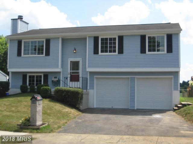 372 Prospect Boulevard, Frederick, MD 21701 (#FR10299624) :: Keller Williams Pat Hiban Real Estate Group