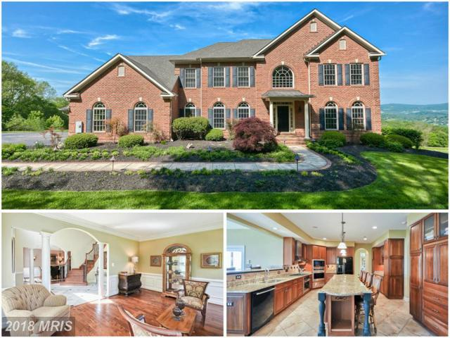 4522 Coxey Brown Road, Myersville, MD 21773 (#FR10317294) :: Jim Bass Group of Real Estate Teams, LLC
