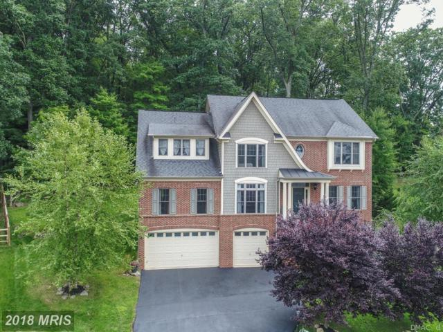 6720 Box Turtle Court, New Market, MD 21774 (#FR10318935) :: ReMax Results