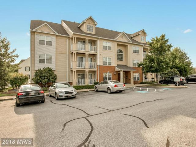6109 Springwater Place #2302, Frederick, MD 21701 (#FR10319098) :: Pearson Smith Realty