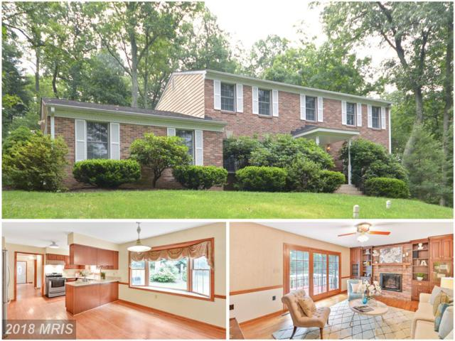 5105 Garland Court, Ijamsville, MD 21754 (#FR10322472) :: Jim Bass Group of Real Estate Teams, LLC