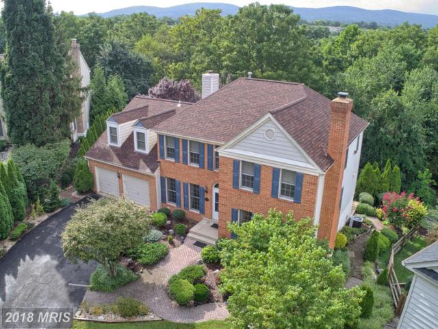 1007 Dulaney Mill Drive, Frederick, MD 21702 (#FR10324263) :: ReMax Results