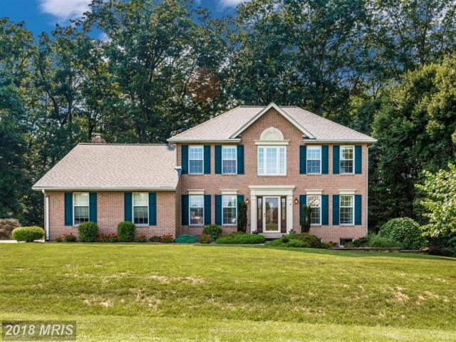 4800 Marianne Drive, Mount Airy, MD 21771 (#FR10324309) :: Jim Bass Group of Real Estate Teams, LLC