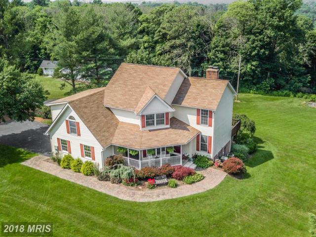 9022 Old Hagerstown Road, Middletown, MD 21769 (#FR10325634) :: The Bob & Ronna Group