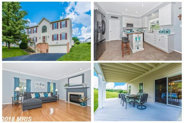 1 Pointe Terrace N, Middletown, MD 21769 (#FR10325794) :: The Bob & Ronna Group