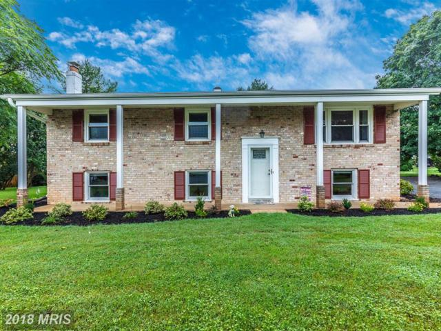 8212 Pembrook Court, Frederick, MD 21704 (#FR10333337) :: RE/MAX Plus