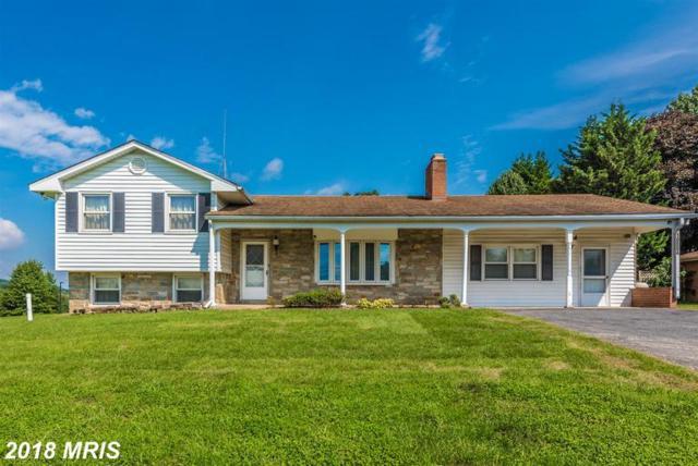 10004 Old National Pike, Ijamsville, MD 21754 (#FR10337310) :: Jim Bass Group of Real Estate Teams, LLC