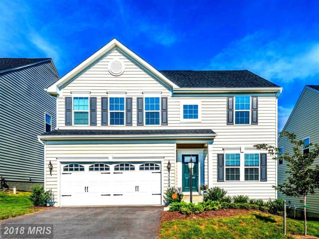 5828 Shepherd Drive, Frederick, MD 21704 (#FR10340355) :: RE/MAX Plus