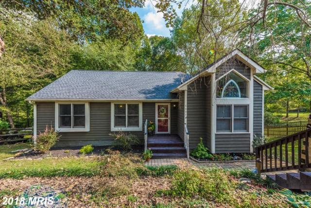 6807 Whistling Swan Way, New Market, MD 21774 (#FR10342326) :: Jim Bass Group of Real Estate Teams, LLC