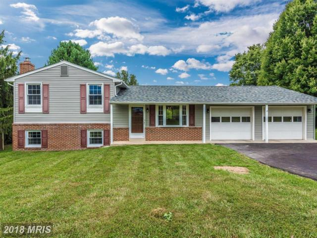 11376 Canary Drive, Ijamsville, MD 21754 (#FR10349047) :: RE/MAX Plus