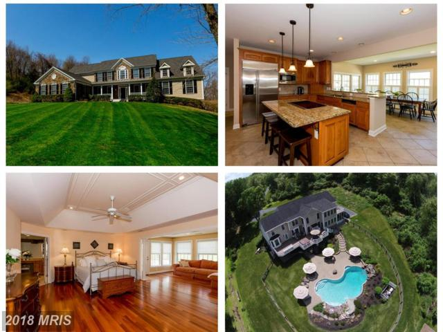 6042 Detrick Road, Mount Airy, MD 21771 (#FR10349668) :: RE/MAX Plus
