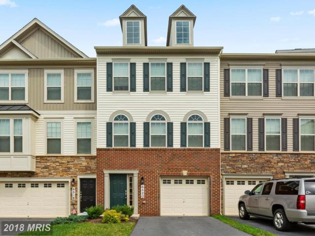 6520 Newton Drive, Frederick, MD 21703 (#FR10350812) :: Ultimate Selling Team