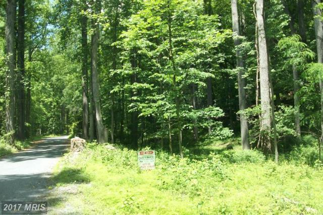 Eylers Valley Road, Thurmont, MD 21788 (#FR9831719) :: Pearson Smith Realty