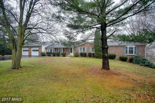 4295 Hollow Court, Middletown, MD 21769 (#FR9841777) :: LoCoMusings