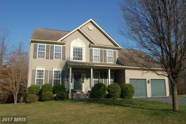 5741 Little Spring Way, Frederick, MD 21704 (#FR9875084) :: LoCoMusings
