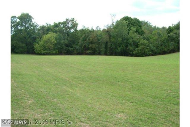 3520 Sigler Road, Jefferson, MD 21755 (#FR9899310) :: Pearson Smith Realty