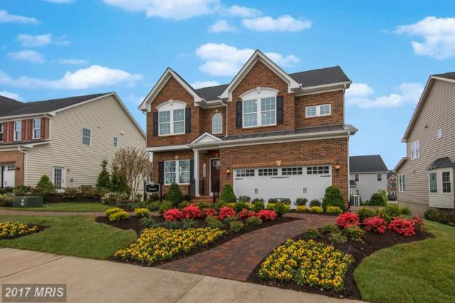 308 Conundrum Court, Frederick, MD 21702 (#FR9953291) :: LoCoMusings