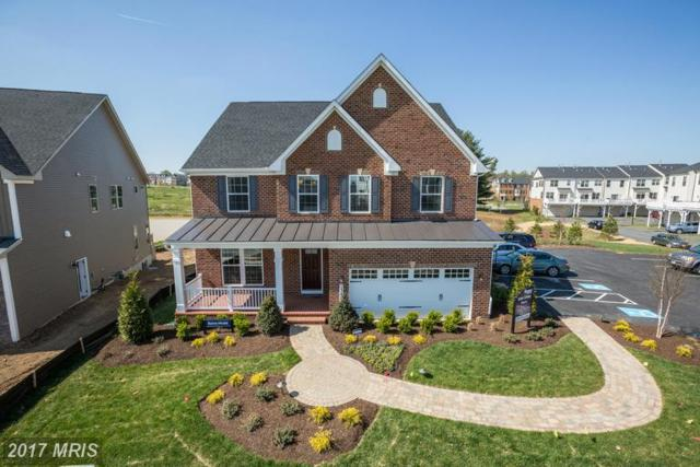 302 Conundrum Court, Frederick, MD 21702 (#FR9953414) :: LoCoMusings