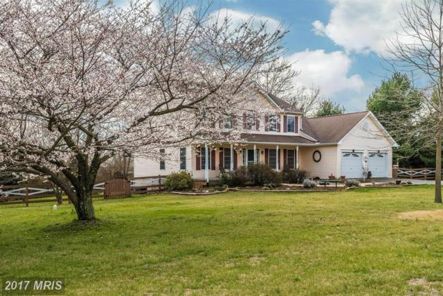 4601 Basset Place, Middletown, MD 21769 (#FR9967334) :: LoCoMusings