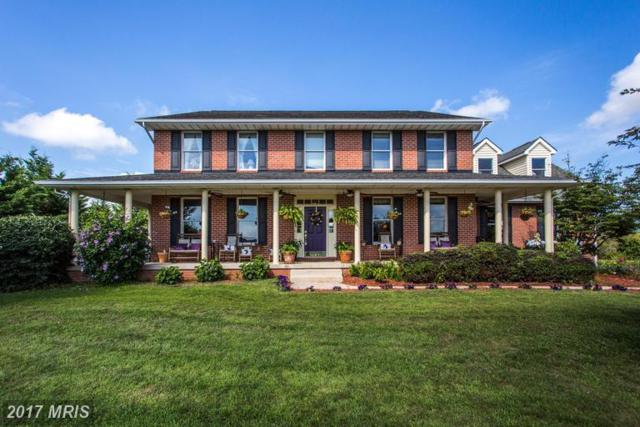6626 Stableview Court, Jefferson, MD 21755 (#FR9967868) :: LoCoMusings