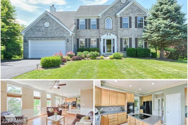 20 Knoll Side Lane, Middletown, MD 21769 (#FR9975312) :: ReMax Plus