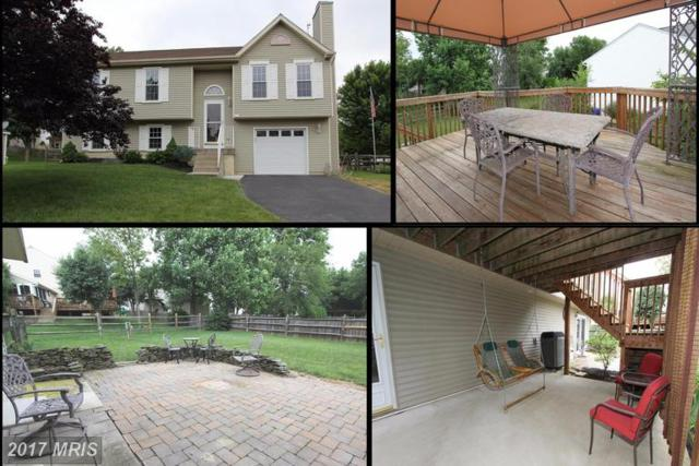 202 Westview Drive, Thurmont, MD 21788 (#FR9980694) :: LoCoMusings