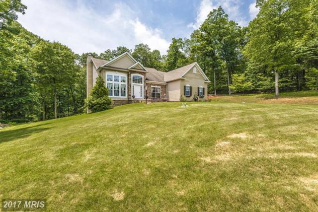 12906 Tower Road, Thurmont, MD 21788 (#FR9982278) :: A-K Real Estate