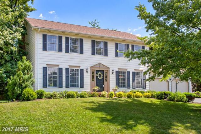 6640 Fox Meade Court, Frederick, MD 21702 (#FR9982805) :: ReMax Plus