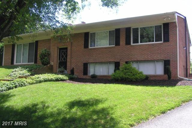 6421-A Plant Road, Frederick, MD 21701 (#FR9984553) :: The Sebeck Team of RE/MAX Preferred