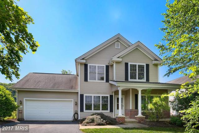5651 Vineyard Court, New Market, MD 21774 (#FR9985171) :: The Katie Nicholson Team