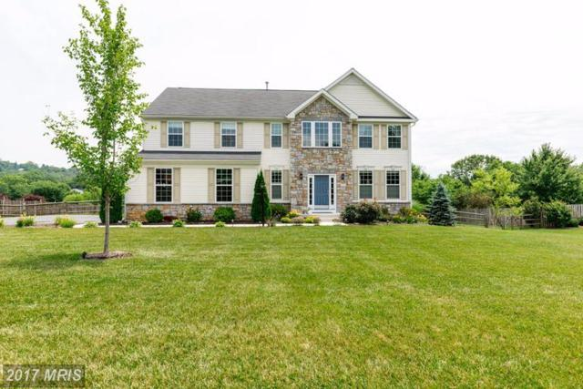6803 Southridge Way, Middletown, MD 21769 (#FR9987295) :: ReMax Plus