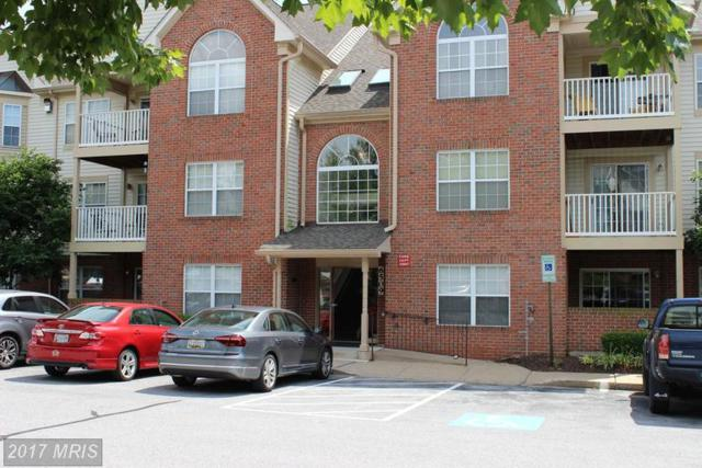 6509 Springwater Court #6303, Frederick, MD 21701 (#FR9987341) :: Colgan Real Estate