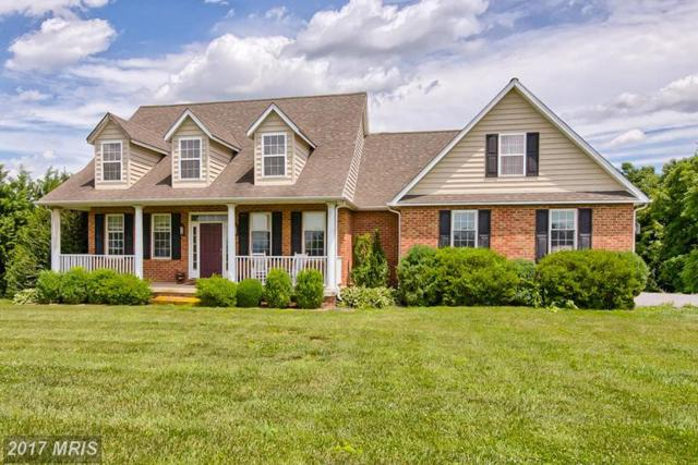11129 Liberty Road, Frederick, MD 21701 (#FR9988128) :: ReMax Plus
