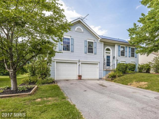1310 Willow Oak Drive, Frederick, MD 21701 (#FR9995190) :: Pearson Smith Realty