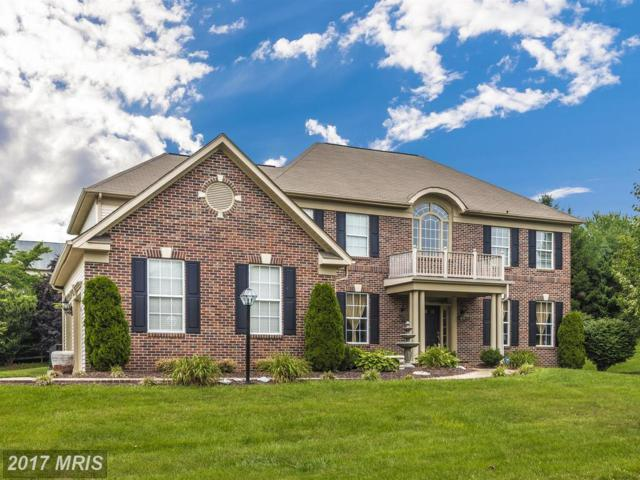 6602 Mackenzie Place, Ijamsville, MD 21754 (#FR9997050) :: Pearson Smith Realty
