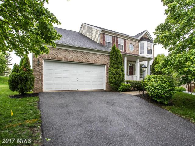 11047 Sanandrew Drive, New Market, MD 21774 (#FR9999105) :: Pearson Smith Realty