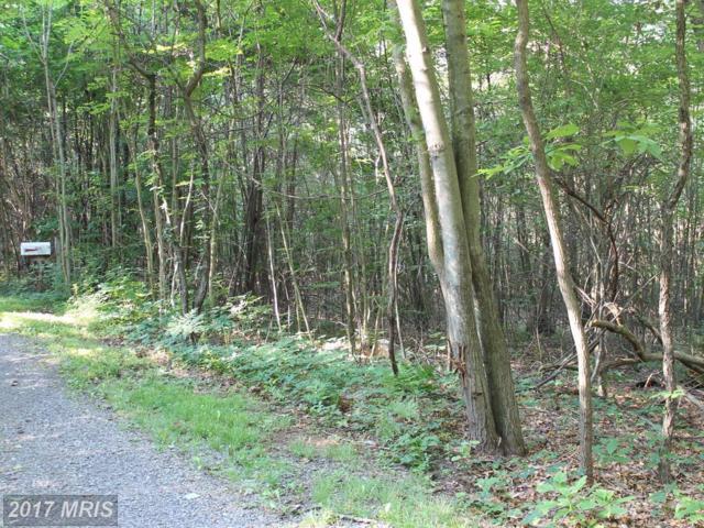311 White Deer Drive, Breezewood, PA 15533 (#FU10008315) :: LoCoMusings
