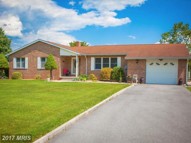 626 Franklin Mills Road, Warfordsburg, PA 17267 (#FU10016258) :: LoCoMusings