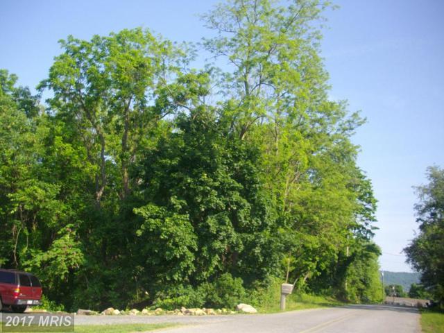 Locust Dr, Mcconnellsburg, PA 17233 (#FU10080134) :: Pearson Smith Realty