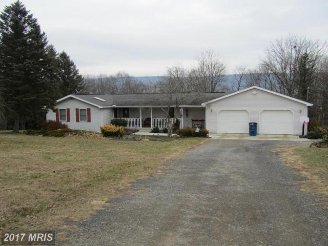 255 Brick Road, Mcconnellsburg, PA 17233 (#FU10122131) :: Pearson Smith Realty