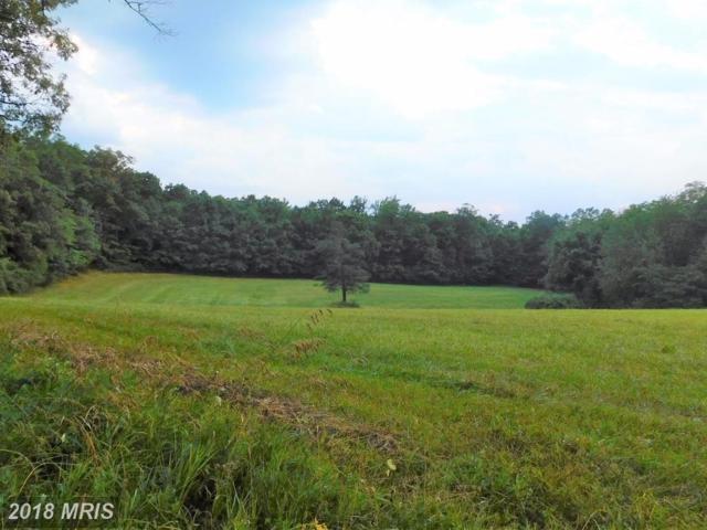 Buck Valley Road, Warfordsburg, PA 17267 (#FU10183854) :: Colgan Real Estate