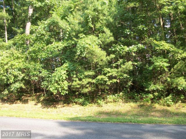 145 Lake Holiday Rd, Cross Junction, VA 22625 (#FV10002340) :: LoCoMusings