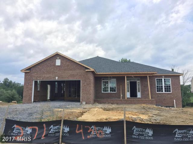 436 Talamore Drive, Stephens City, VA 22655 (#FV10003394) :: Pearson Smith Realty