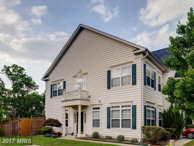 301 Quinton Oaks Circle, Stephens City, VA 22655 (#FV10012247) :: Pearson Smith Realty