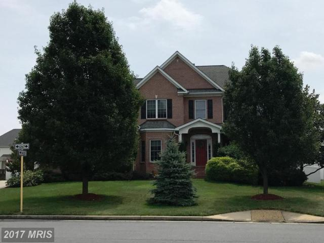 229 Fairfield Drive, Winchester, VA 22602 (#FV10013049) :: ExecuHome Realty