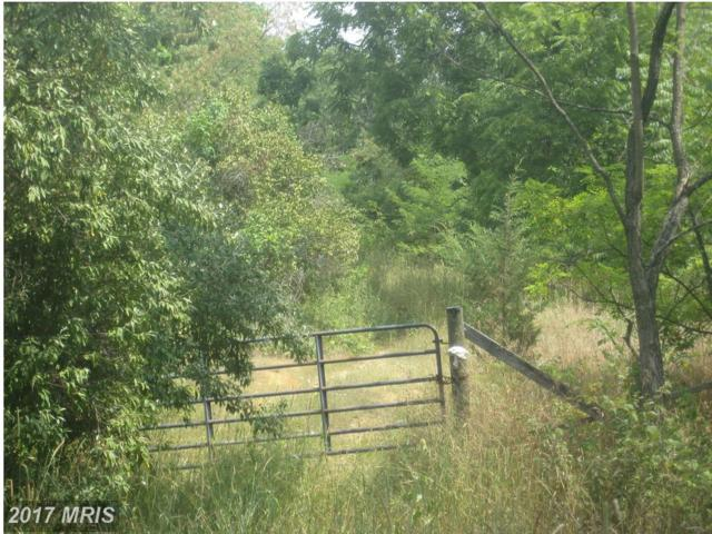 8660 Northwestern Pike, Gore, VA 22637 (#FV10020132) :: Pearson Smith Realty