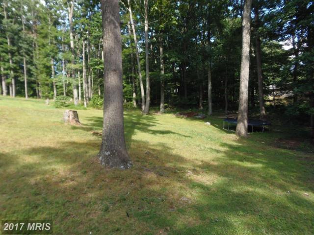 Fall Run Forest Road, Winchester, VA 22602 (#FV10025385) :: LoCoMusings